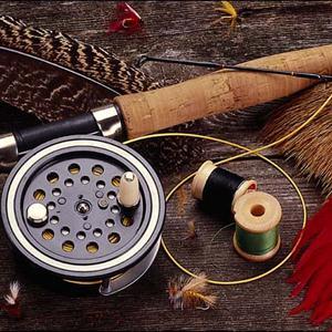 Охотничьи и рыболовные магазины Лосино-Петровского