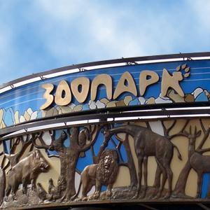 Зоопарки Лосино-Петровского
